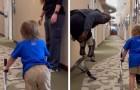 Un enfant de deux ans fait ses premiers pas avec des prothèses : le champion paralympique l'encourage
