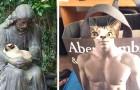 Vita da gatto: 22 volte in cui i felini ci hanno fatto tornare il sorriso con i loro comportamenti unici