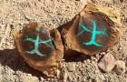 In Australien wurde ein seltener türkisfarbener Opal gefunden, der in versteinertem Holz lagerte: er hat einen surrealen Charme