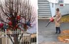 17 scènes drôles et bizarres qui résument au mieux les problèmes de la vie avec les voisins