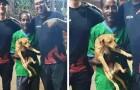 En hemlös man och hans hund hittar en plånbok full med pengar och beslutar sig för att ge tillbaka den till ägaren