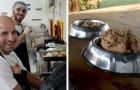 Un chef décide de donner les aliments non consommés par ses clients aux animaux des refuges locaux