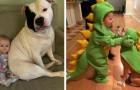 """""""Seu filho precisa de um cachorro"""": 17 fotos cheias de doçura descrevem a amizade entre crianças e seus filhotes"""