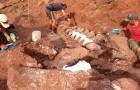Die Überreste eines Titanosauriers in Patagonien entdeckt: Es könnte das größte Landtier sein, das je existierte