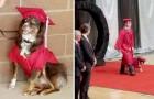Si presenta il giorno del diploma a fianco del suo fedele cane da terapia: gli aveva salvato la vita anni prima