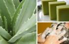 Shampooing solide à l'aloe : comment préparer à la maison un produit naturel et efficace pour le soin des cheveux