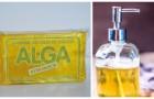 Les utilisations alternatives du savon au potassium qu'il faut connaître