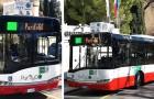 Video di Autobus