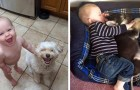 15 adorabili foto dimostrano come anche i bimbi abbiano bisogno di un cane nella loro vita
