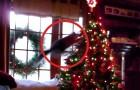Des chats qui MARTYRISENT le sapin de Noel: une compilation qui décape!