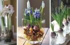Cultivez les fleurs sans terre avec ces conseils utiles pour forcer la floraison des bulbes en pot