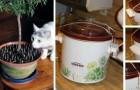 Simplifiez-vous la vie avec ces solutions DIY pour recycler de nombreux objets communs