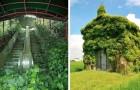 De natuur neemt terug wat van haar is: 15 onbewoonde plekken waar de plantenwereld heeft gewonnen