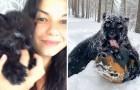 Una pantera abandonada por la mamá es criada por una mujer y por su perro: prácticamente son inseparables