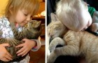 Cats and kids: 17 photos documenting the friendship that can arise between a feline and its little owner