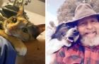 En blick full av kärlek - 21 jättegulliga bilder av djur och deras ägare