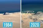 Wie sehr hat sich die Erde in den letzten 36 Jahren verändert? Google Earth zeigt es uns mit seinen Zeitrafferaufnahmen