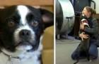 Ze verliest haar hond en vindt hem na 2 lange jaren terug: