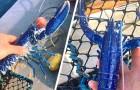 Een visser vindt een zeldzame blauwe kreeft en besluit hem terug in zee te zetten: