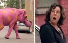 Ein ROSA Elefant überquert die Straße: Die Reaktion der Personen ist SUPERLUSTIG