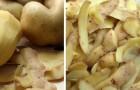 Le bucce delle patate possono essere usate in molti modi: imparali e non le getterai più via
