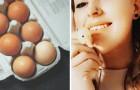 Elle fait naître un caneton d'un œuf acheté au supermarché : c'est maintenant son animal de compagnie