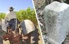 Contadino sposta una pietra e allarga il confine del Belgio: il bizzarro incidente diplomatico