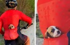 A cyclist finds an abandoned dog on the street and saves it by putting it in her shirt pocket