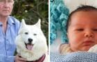 Encuentra a un recién nacido abandonado en un arbusto gracias al olfato de su perro: