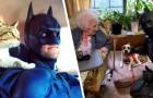Si veste da Batman per salvare i cani abbandonati nei rifugi: un vero