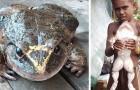 Un uomo ha trovato questa rana gigantesca: