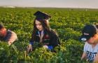 Uma aluna homenageia seus pais tirando fotos da formatura nos campos onde sua família trabalha