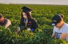 Una studentessa onora i genitori scattando le foto di laurea nei campi agricoli in cui lavorano