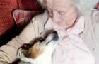 Mulher de 96 anos adota um cachorro de 17: