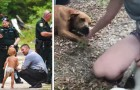 A missing autistic child is found in the woods safe and sound: his dogs had protected him