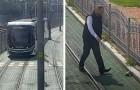 Autista del tram ferma il mezzo di trasporto per salvare una tartaruga in difficoltà: era incastrata tra le rotaie