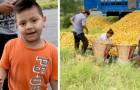 Roban las naranjas de un camión volcado en la carretera: un niño se acerca y ofrece pagarle