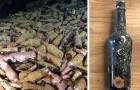 Des centaines de bouteilles de bière du 19e siècle retrouvées enfouies au fond de la mer :