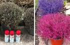 Vernice spray sulle piante secche: la nuova