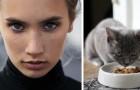 Ragazza vegana vuole eliminare la carne dalla dieta del gatto: la matrigna si oppone
