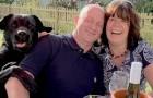 Labrador drängt sich ins Foto seiner menschlichen Eltern und erntet das Gelächter des ganzen Pubs