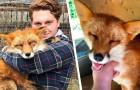 Jongen redt een vos van een pelsdierfokkerij: nu zijn ze onafscheidelijk