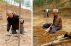 Un homme âgé handicapé a planté des arbres pendant près de 20 ans : aujourd'hui, une véritable forêt a poussé