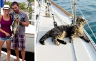 Een stel stopt met werken om de wereld per boot rond te reizen met hun kat