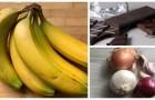 Le réfrigérateur n'est pas toujours la solution: découvrez quels aliments doivent être conservés à température ambiante