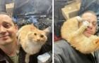 Er findet eine Katze in seiner Garage, während er gerade das Auto repariert: Es entsteht eine sympathische Freundschaft