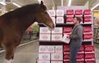Cet homme achète de la bière mais il reçoit une visite... inattendue!
