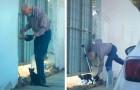 Um homem idoso alimenta um gatinho de rua todos os dias: o vídeo se torna viral