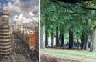In Madrid gaat een enorm stadsbos komen met 75km aan bomen voor luchtzuivering en temperatuurverlaging