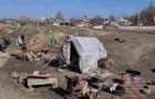 Dakloze heeft geen geld of huis, maar heeft wel plek voor dertig honden en kampeert ergens met hen samen
